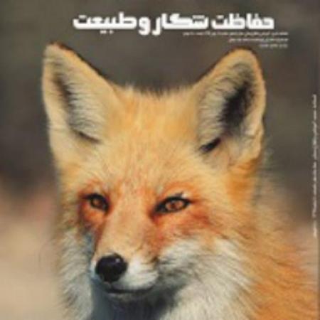 کانال مجلات شکار و طبیعت
