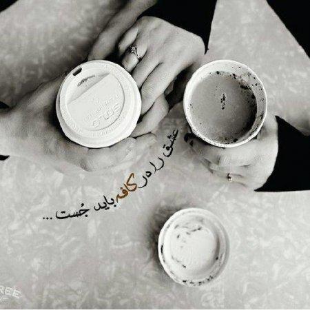 کانال عشق را در کافه بايد جست…