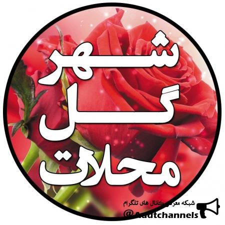 کانال شهر گل محلات