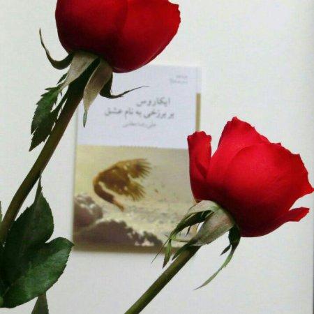 کانال علی رضا مطلبی/مجموعه شع