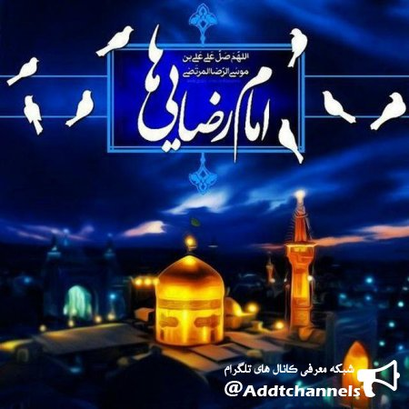 کانال هیئت مکتب الرضا زنجان