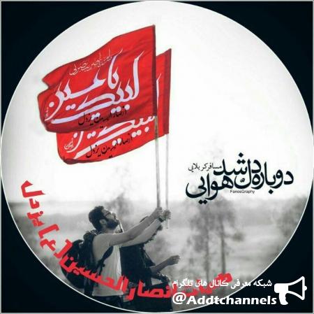 کانال انصار الحسین یزدل