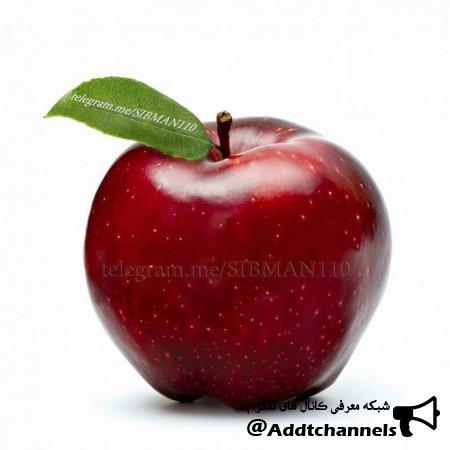 کانال سیب – سرگرمی و سلامتی