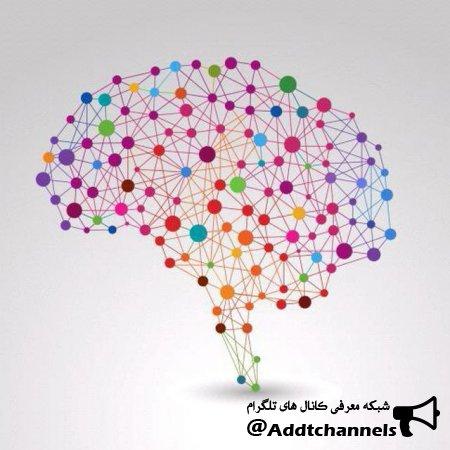 کانال مغز متفکر