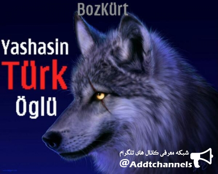 کانال اشعار ترکی