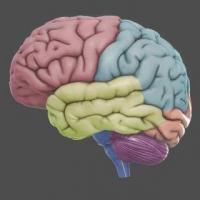 کانال بررسی اختلالات روانی