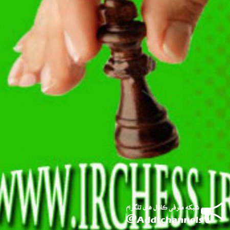 کانال انجمن شطرنج ایران