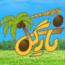 کانال تلگرام گل و گیاه و باغبانی (نارگیل)